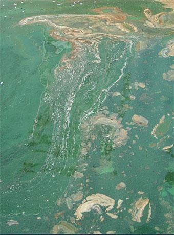 Raw wastewater
